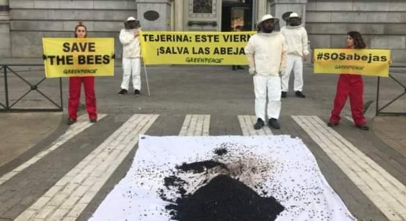 greenpeace-abejas-tejerina