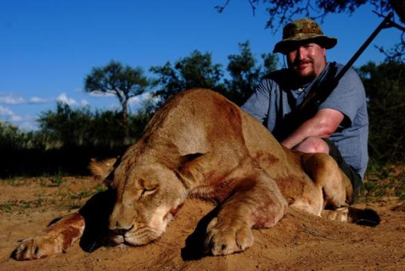 img_npalou_20191008-102451_imagenes_lv_otras_fuentes_hunting-trophy-animals-of-africa-lioness-kz9--656x439@LaVanguardia-Web